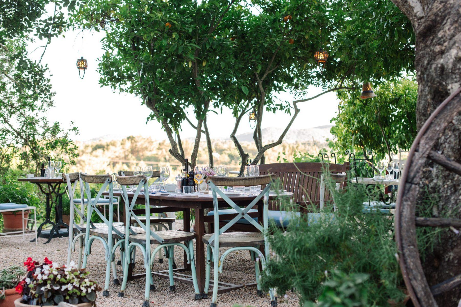 Wine Tasting in Ibiza La Paloma